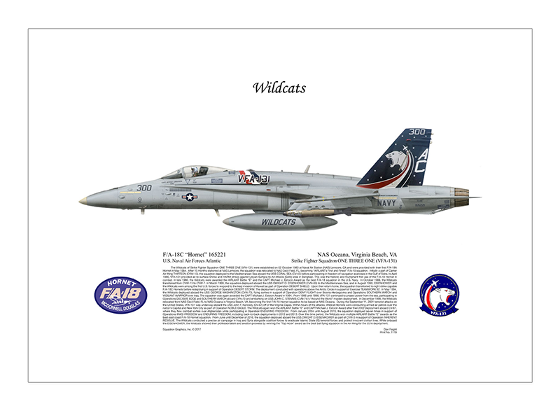 1119-FA-18C-Hornet-Wildcats-NAS-Oceana-Virginia-Beach-VA