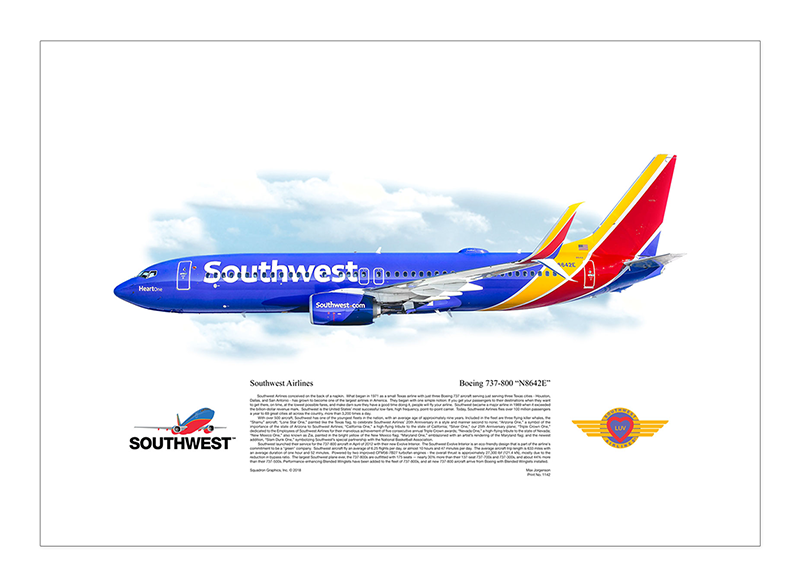 1142-Southwest-Airlines-Boeing-737-800-N8642E